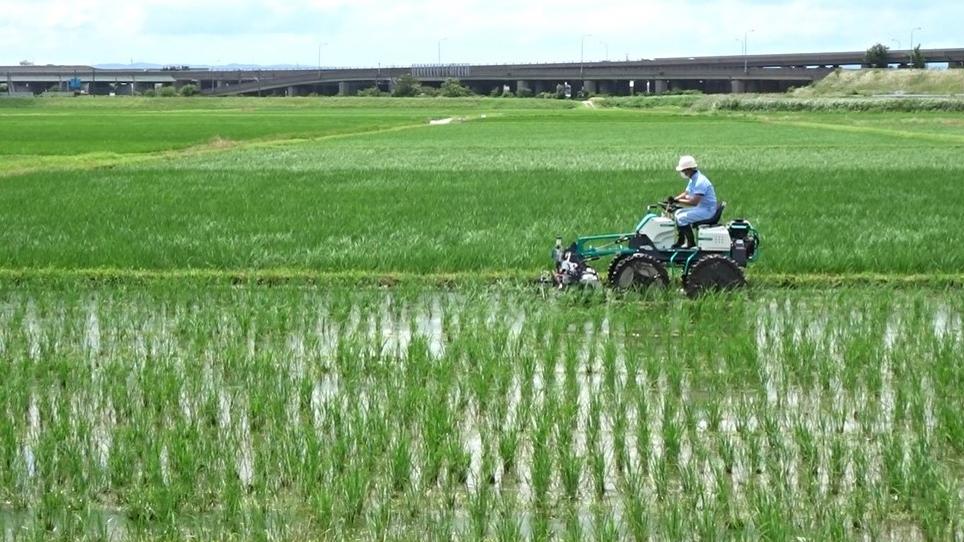 木更津市との連携 水稲スマートオーガニック栽培